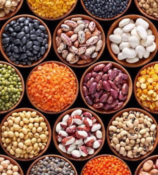 Tänk näring, inte energi: protein